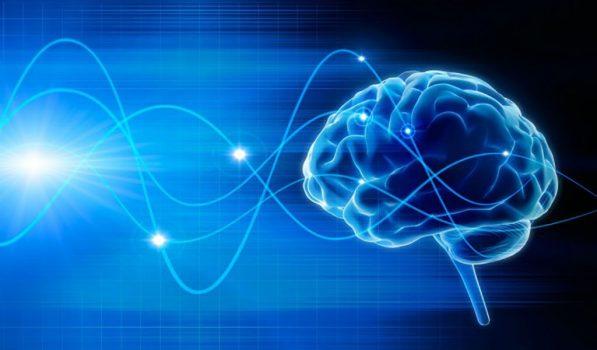 foto del cerebro